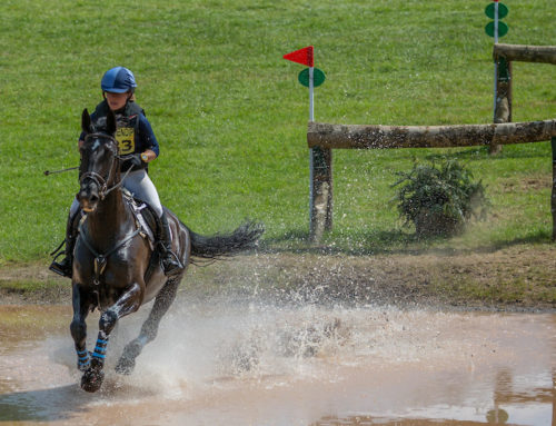 Revamp to cross country courses at Nunney International Horse Trials